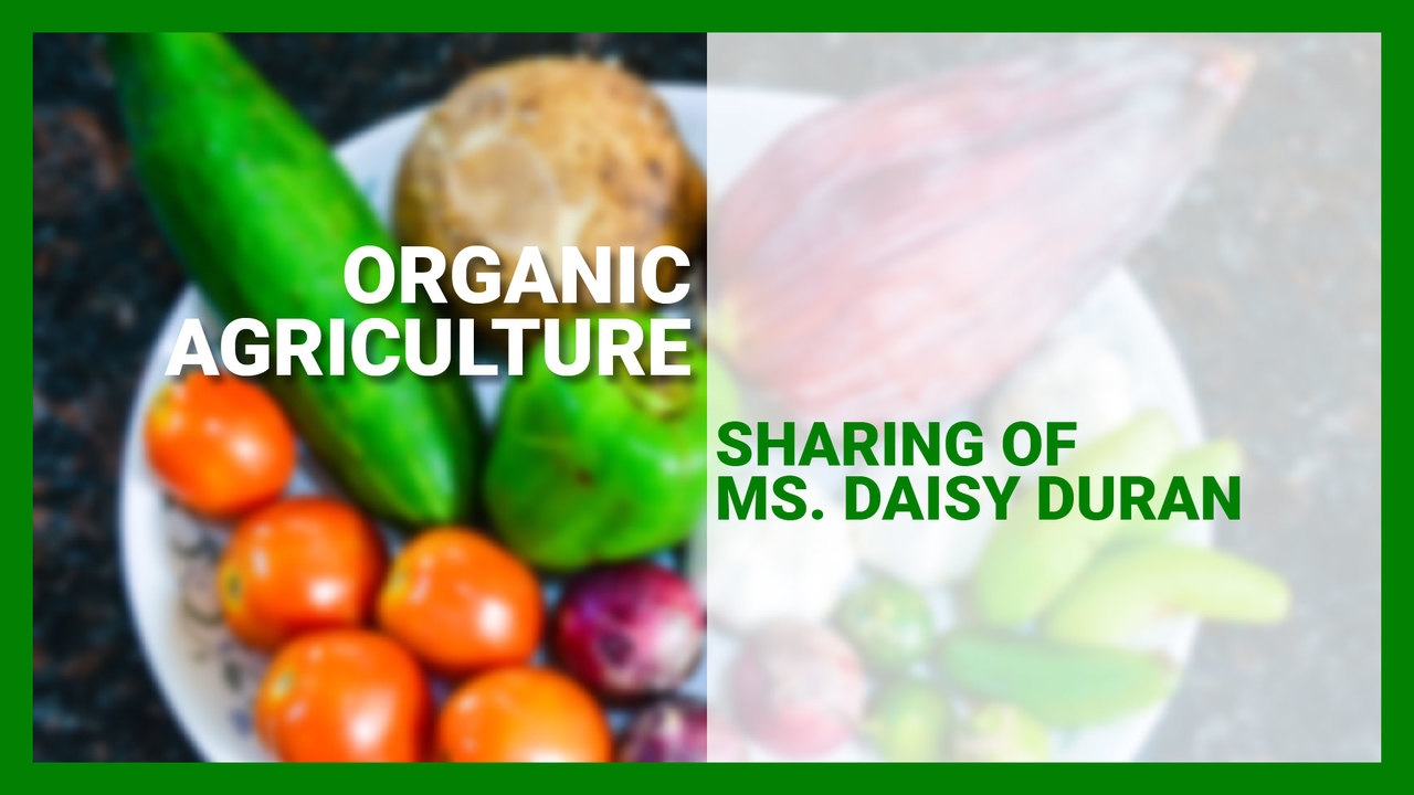 Organic Agriculture: Sharing of Ms. Daisy Duran