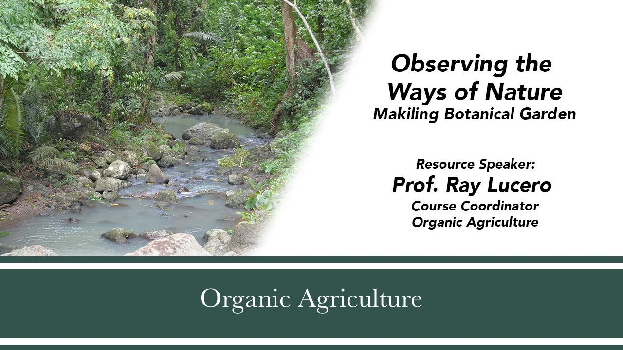 Observing the Ways of Nature: Makiling Botanical Garden | Prof. Ray Lucero
