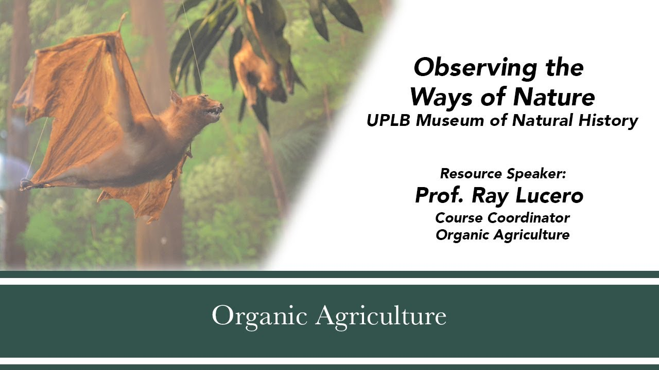 Observing the Ways of Nature| UPLB Museum of Natural History| Prof. Ray Lucero