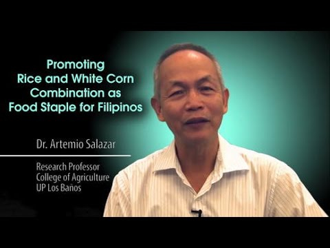 Promoting Rice and White Corn Combination as Food Staple for Filipinos