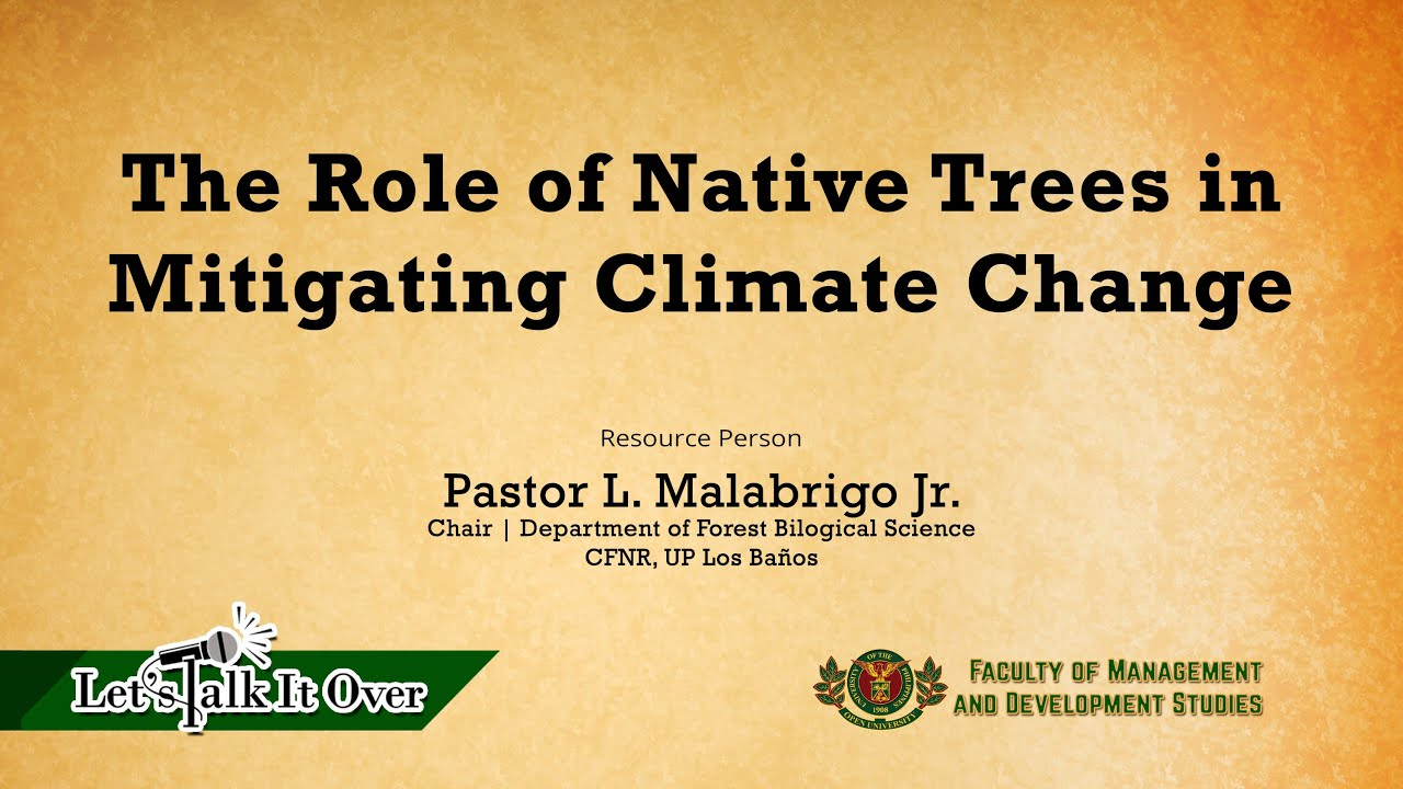 The Role of Native Trees in Mitigating Climate Change