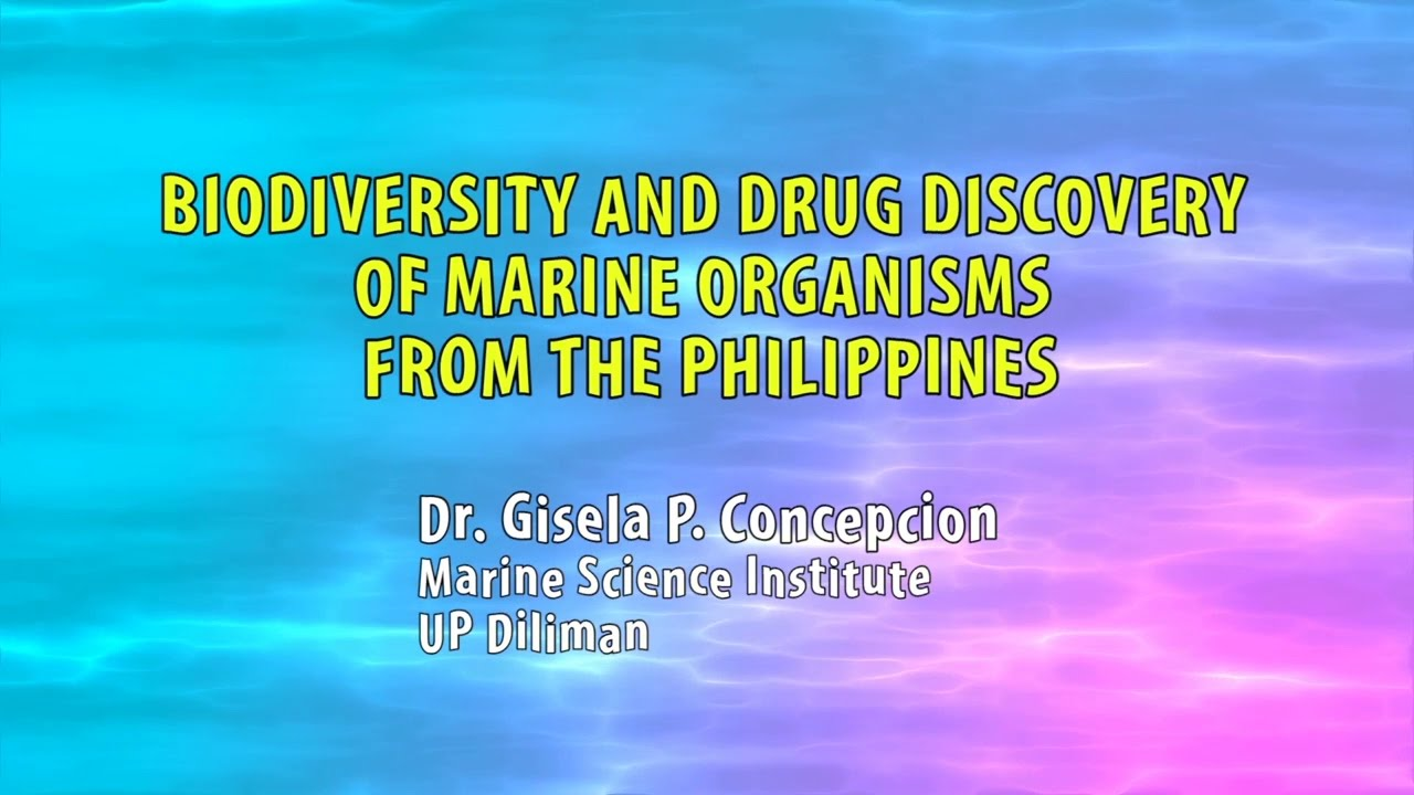 UP TALKS | Marine Organisms from the Philippines | Dr. Gisela Concepcion