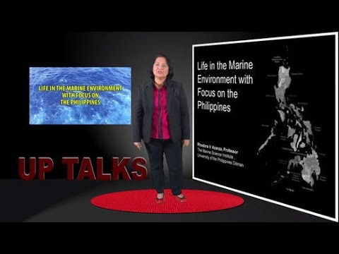 UP TALKS | Marine Sponges and Climate Change | Dr. Cecilia Conaco