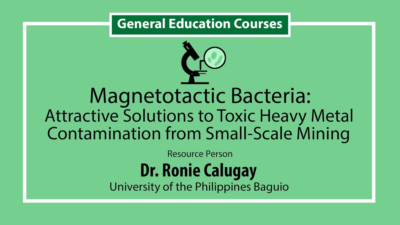 Magnetotactic Bacteria: Attractive Solutions to Toxic Heavy Metal Contamination from Small-Scale Mining | Dr. Ronie Calugay